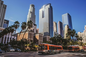 3 DAYS VACATION IN MIAMI WITH TRANSPORTATIONS AND ACTIVITIES