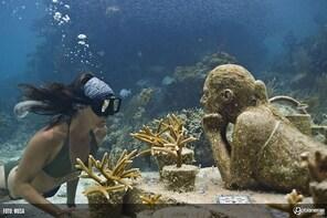 Ultimate Snorkel Adventure