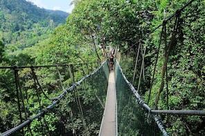 Private Tour:Taman Negara National Park with Lata Berkoh