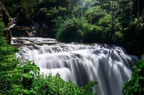 The Midland Waterfall Hunt from Kandy (Private Day Tour)
