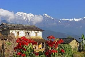 Dhampus Trek from Pokhara