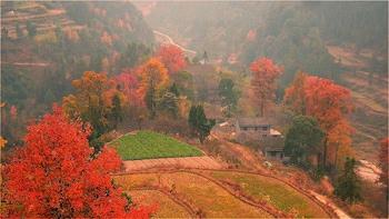 4 Days Zhangjiajie Mountain with Rice Terrace Tour (5-star)
