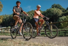 Rent an E-Bike 1 Day & Explore Ayagaures Hill or Arguineguin