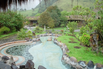 Private Tour Papallacta Hot Springs and Hummingbirds garden
