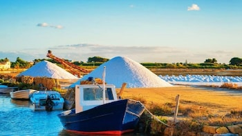 Salt of Marsala, Lagoon by boat and tasting from Trapani
