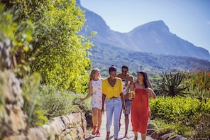 Kirstenbosch and Company Gardens