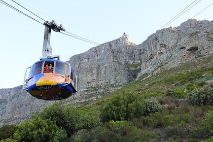 Robben Island, Table Mountain and City Tour Private Tour