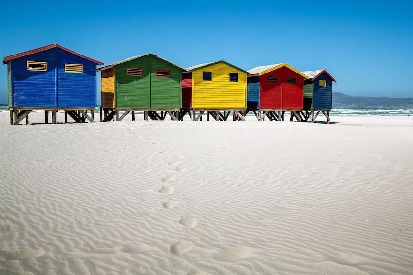 Show item 3 of 10. Cape Peninsula, Cape of Good Hope and Penguins Private Tour