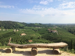 The Prosecco Experience - Guided Tour & tasting in the land
