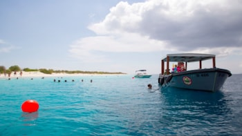 Cruise, Beach & Snorkel Tour