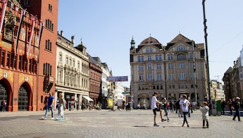 Discover Basel in 60 Minutes with a Local