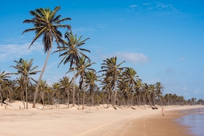 Cumbuco Beach & Sand Dunes Tour from Fortaleza
