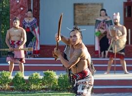 Rotorua Small Group Tour + Optional Activity Add Ons