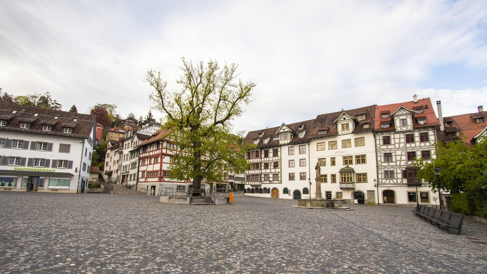 Show item 4 of 6. Historical Walk through St. Gallen's Old Town with a Local