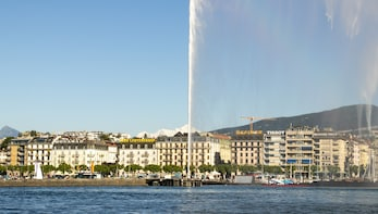 Historical Walk of Geneva - Discover the city with a Local