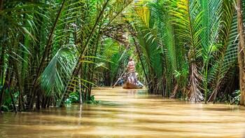 Ho Chi Minh: Discovering Mangrove Jungle Cruise - VAM SAT