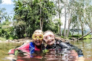 Rainforest Platypus Night Dive (Certified Divers Only once day dive complet...