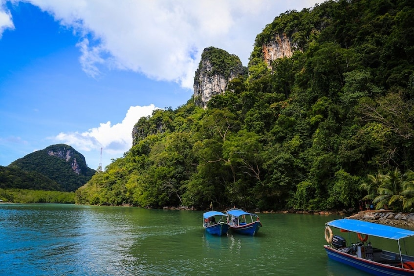 Show item 2 of 2. Langkawi Island Hopping  Boat Tour with Private Transfers