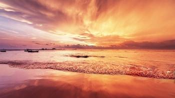 Malaysia Berringis Mangrove Half-day Sunset Tour