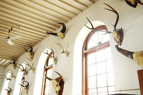 Visit Gass Forest Museum, TNAU Insect Museum and Botanical Garden in Coimba...