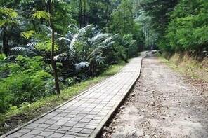 Private Trekking Taman Hutan Raya Juanda Tour