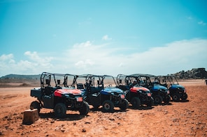 full day utv rental