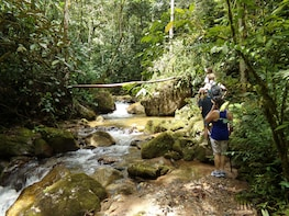 Private Tour: Medellín Nature Experience
