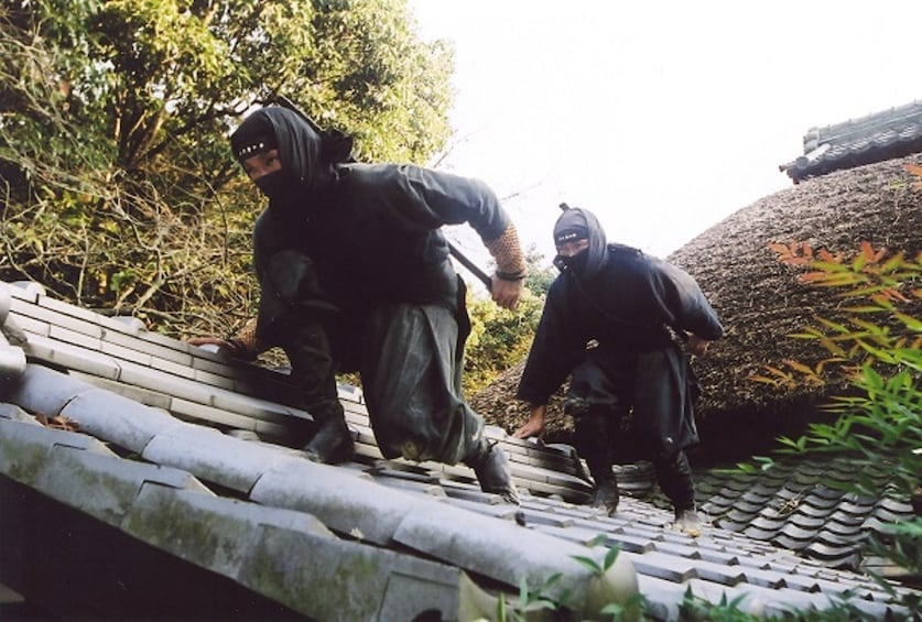 Show item 1 of 5. Explore Ninja Village Iga by Direct Bus from Nagoya