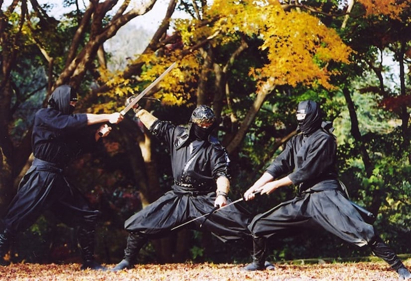 Show item 4 of 5. Explore Ninja Village Iga by Direct Bus from Nagoya