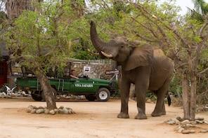 4 Day Classic Kruger National Park Safari