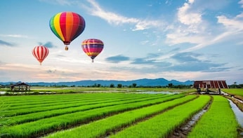 Balloon Chiang Rai - Once in a Lifetime Experience