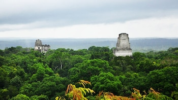 PrivateTour: Tikal Day Tour