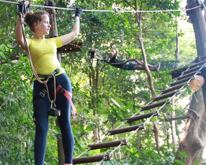 Show item 1 of 5. Tree Top Adventure Park Koh Chang