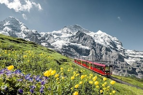Jungfraujoch-Top of Europe train ticket