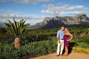 Vineyard Drop and Pick up Wine Tour in the Franschhoek Valley