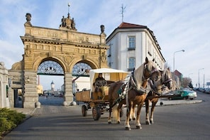 Round trip from Prague to Pilsner Urquell brewery up to 4 hours of waiting