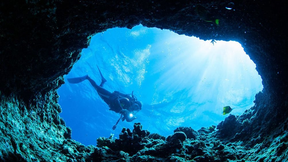 Show item 5 of 5. Okinawa Blue Cave Snorkeling Ticket
