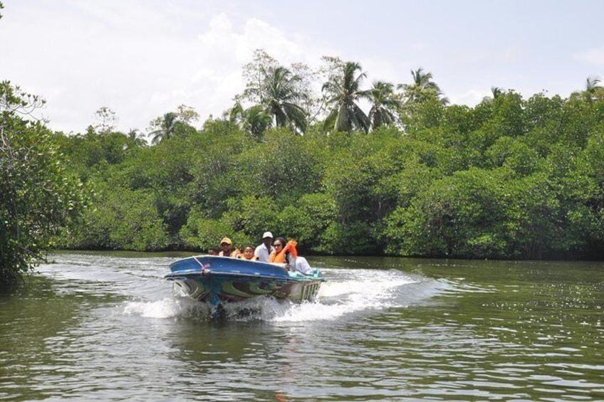 Show item 5 of 9. Madu River Boat Safari