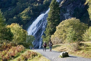 Powerscourt Waterfall Admission Ticket