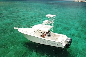 Private Boat Excursions around the US and British Virgin Islands