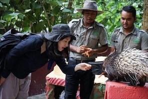Langkawi Wildlife Park Admission Ticket