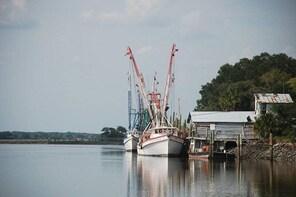 Historic Sea Island Plantation and Lowcountry Life Tour