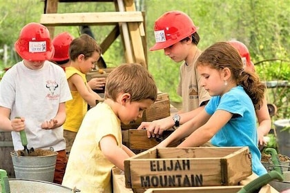 Elijah Mountain Gem Mining Experience Admission Ticket