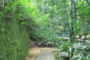 Rio de Janeiro: Jeep Tour to Tijuca Forest