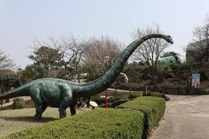 Jeju Dinosaur Land transfer,One way, Round trip