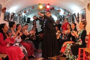 Sacromonte Flamenco Show and Albaicin Walking Tour from Granada