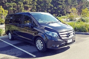 Luxury Private Great Ocean Road Tour up to 7 people - Entire Vehicle