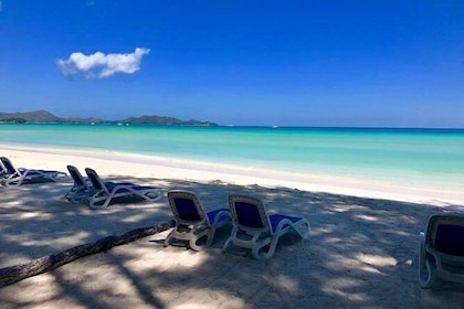 One day on the beach of Anse Volbert