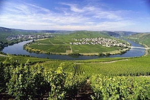 Grape Escape Mosel - Personal wine tour