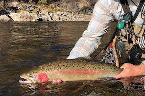Experienced Angler's Private Full Day